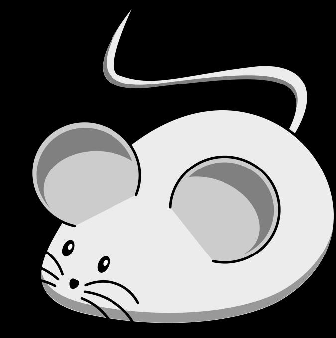 szczurzy ogon 3