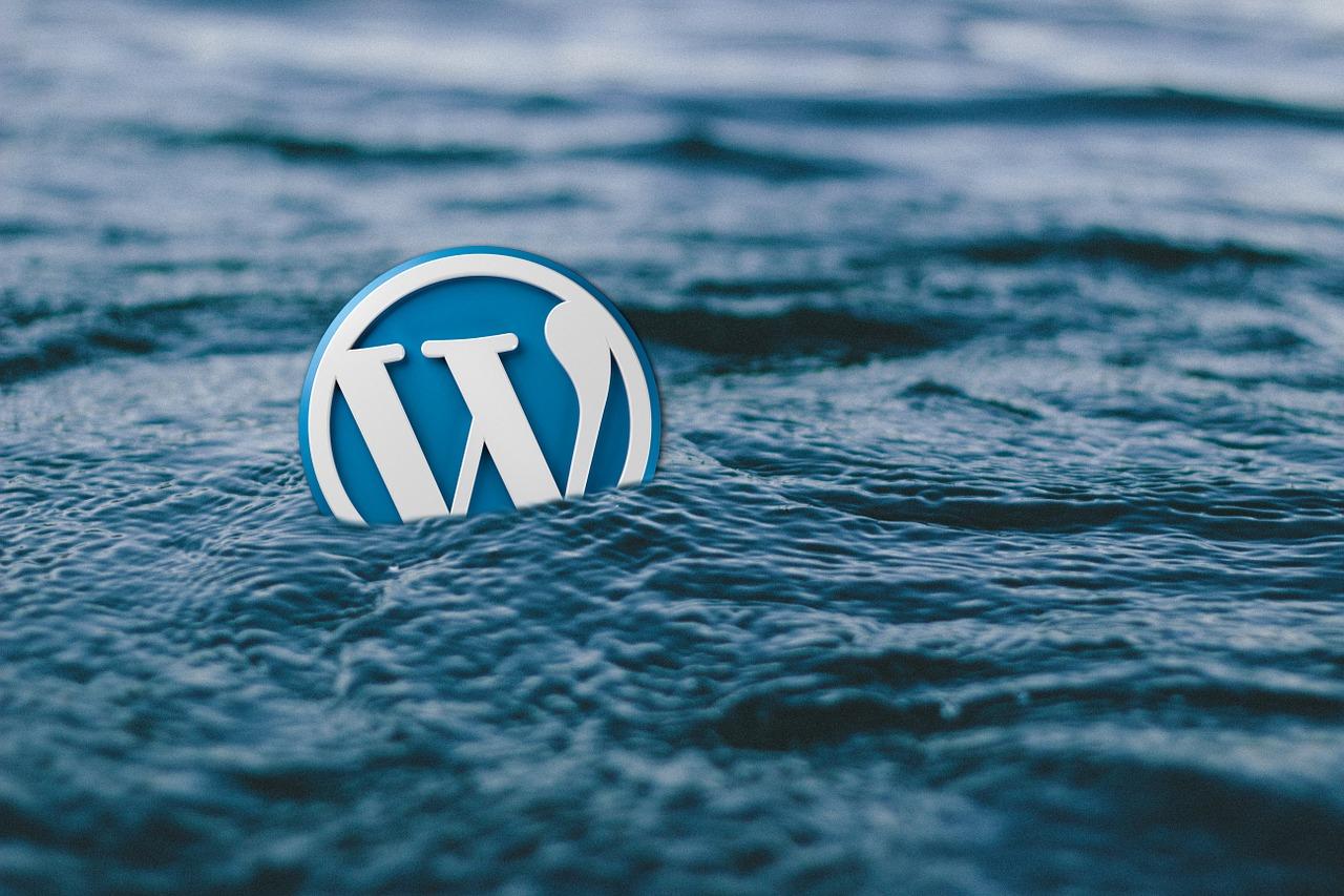 Najczęstsze problemy z WordPressem