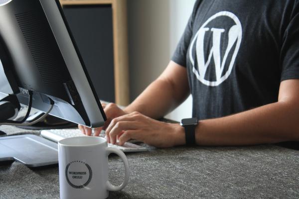 Nowe umiejetności dla freelancera - WordPress