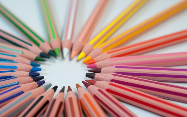 Jak zostać freelancerem: portfolio grafika, które wygrywa zlecenia