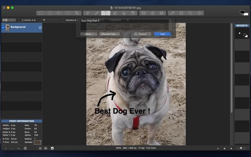 Darmowe alternatywy dla Photoshopa dla początkujących grafików - Seashore
