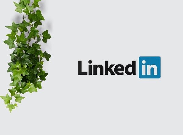 LinkedIn dla freelancera: jak uzupełnić profil, kiedy chcesz zacząć pracować zdalnie?